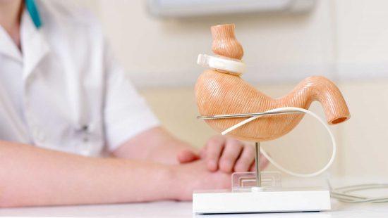 De nouvelles alternatives pour lutter contre l'obésité